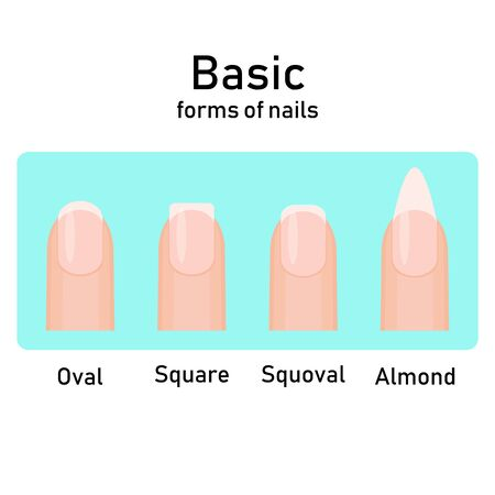 Different basic fashion natural nail shapes. Set kinds forms of nails. Salon nails type trends. Illustration