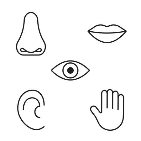 Icon of five human senses, vision, smell, taste, hearing, touch. Line sign eye, nose, mouth, ear, hand. Editable black outline stroke. Vector illustration