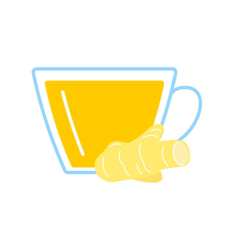 Ginger root herbal tea in glass cup. Teacup and ginger seasoning of fresh herb drink. Vector illustration
