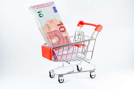 Mini shopping cart with euro banknotes inside.