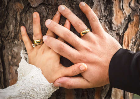 Bride and grooms hands with engagement ring