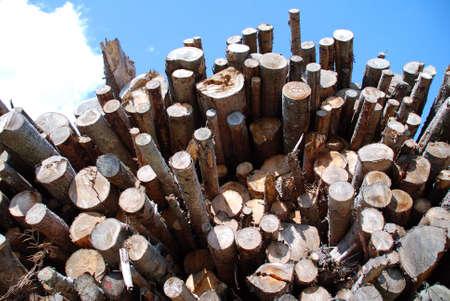 boles: Shot of wood pile in austria beyond blue sky