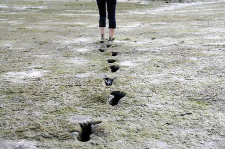 Girl walking barefoot trough mudflat in Brittany, France photo
