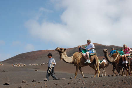 TIMANFAYA NATIONAL PARK, LANZAROTE, SPAIN - JUNE 10: Tourists riding on camels being guided by local people through the famous Timanfaya National Park in June 10, 2009