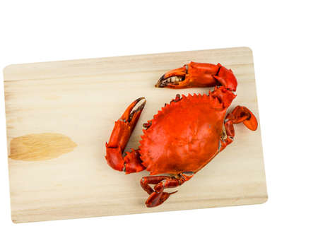 Top view of Scylla serrata. One steamed crab on wood cutting board isolated on white background with copy space. Seafood restaurants concept.