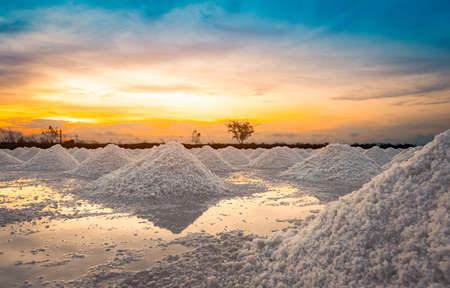 Salt farm in the morning with sunrise sky. Organic sea salt. Evaporation and crystallization of sea water. Raw material of salt industrial. Sodium Chloride. Solar evaporation system. Iodine salt.