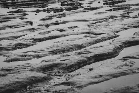 Tidal mudflat. Ripple beach. Low tide. Nature at coastal. Gray background for sad life in the bad day concept. Sea beach in the evening. Tidal phenomenon at seashore.