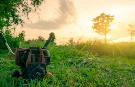 Shoulder type grass cutting machine. Lawn mower engine. Weed and grass mowing with petrol lawn mower in the morning with sunrise sky at rice farm. Cutting green grass for feed livestock in Thailand.