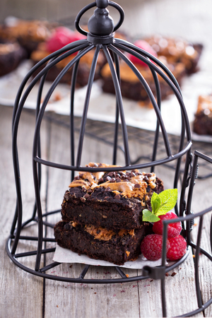Brownies with peanut butter in a cage Diet concept photo