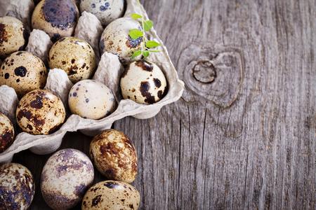 huevos de codorniz: Huevos de codorniz crudos en el fondo de madera