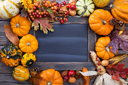 thanksgiving: Pumpkins and variety of squash aroun a chalkboard Stock Photo