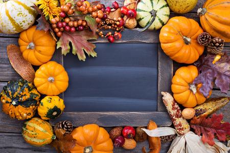 Pumpkins and variety of squash aroun a chalkboard Archivio Fotografico