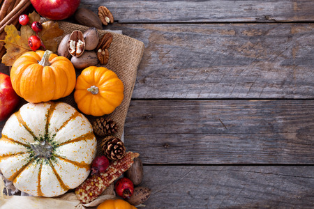 Pumpkins, nuts, indian corn and apples on a rustic table overhead corner frame with empty space