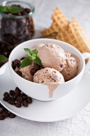 Big cup with scoops of chocolate coffee mascarpone ice cream Reklamní fotografie