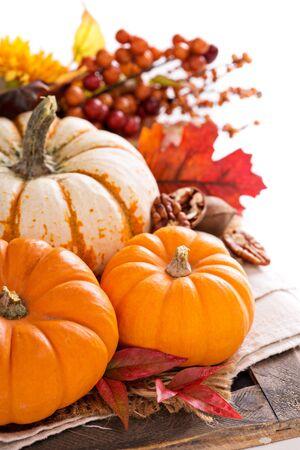 fond de texte: Pumpkin toujours la vie avec noix et �pices isol� sur blanc