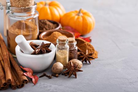 Homemade pumpkin pie spice in a glass jar Foto de archivo