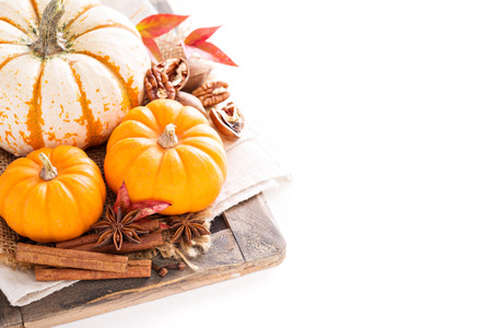 Variety of decorative pumpkins and spices on white background
