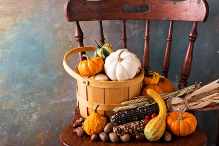 Fall seasonal still life with pumpkins, nuts and indian corn