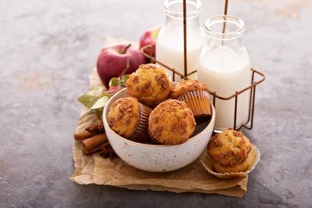 Apple cinnamon streusel muffins with milk bottles Reklamní fotografie