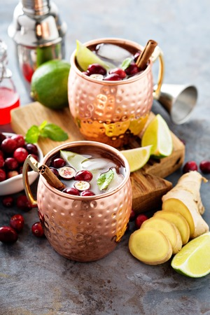 Winter Moscow mule cocktail with lime, ginger and cranberry