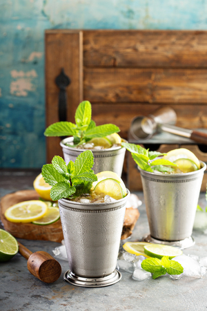 Classic mint julep cocktail Stock Photo