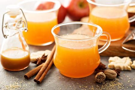 따뜻한 사과 쥬 스, 따뜻한 향신료, 계 피와 육 두 구 스톡 콘텐츠