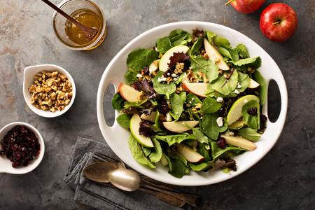 Fall salade met lente mix, appel, noten en cranberry Stockfoto