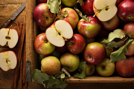 Freshly picked apples in a wooden crate Stockfoto