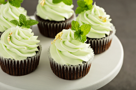 Chocolate mint cupcakes with green frosting Stok Fotoğraf