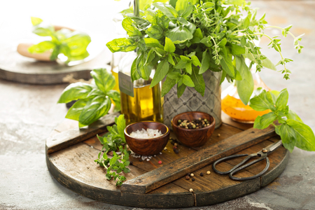 Cooking with fresh herbs Banco de Imagens