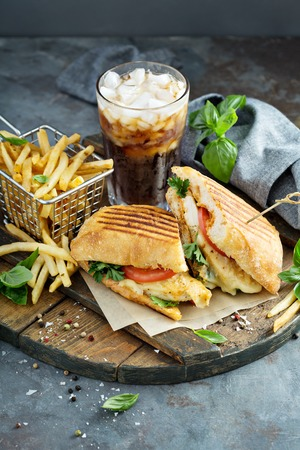 Panini sandwich with chicken and cheese Banque d'images - 103968566