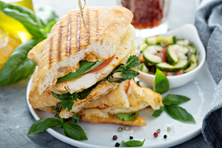 Grilled panini sandwich with chicken and cheese Zdjęcie Seryjne - 103968574