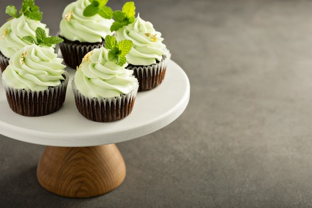 Chocolate mint cupcakes 免版税图像
