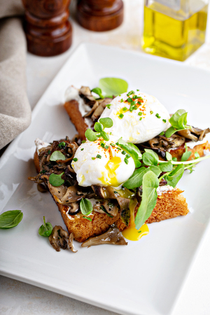 Breakfast toast with cheese, mushrooms and poached eggs