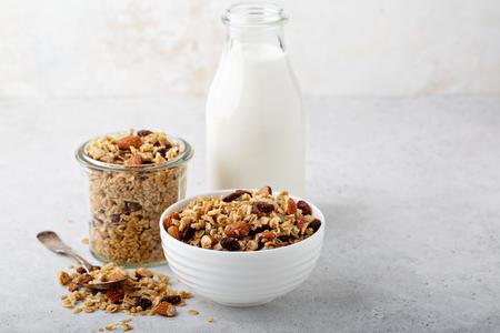 Domowa granola z kokosem i migdałami Zdjęcie Seryjne