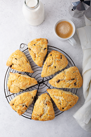 Homemade chocolate chip scones Banque d'images - 122995648