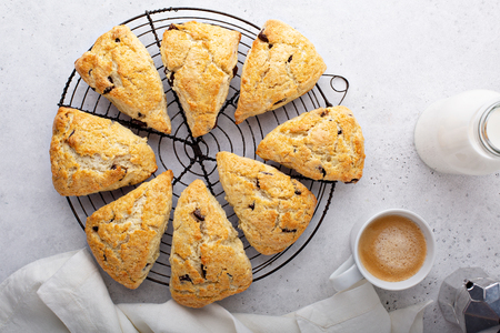 Homemade chocolate chip scones Banque d'images - 122995657