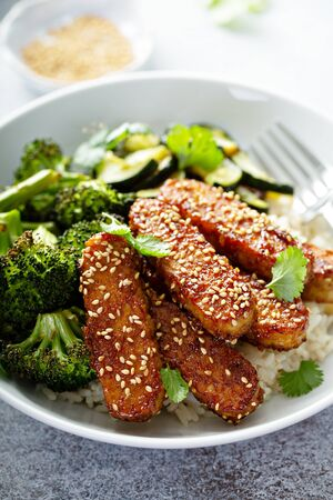 Teryaki tempeh with rice and vegetables Stock Photo