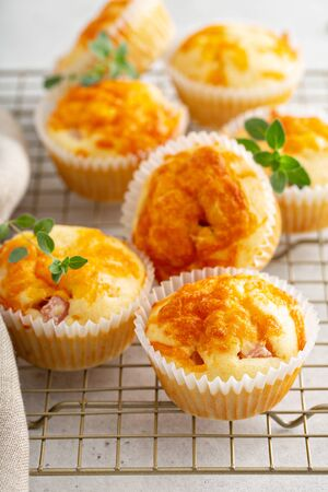 Ham and cheddar cheese muffins for lunch or snack 写真素材