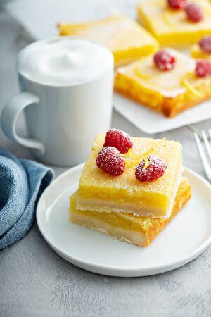 Lemon bar dessert with powdered sugar, lemon zest and raspberry Standard-Bild