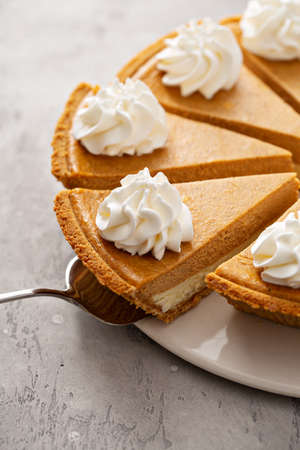 Pumpkin pie with whipped cream 版權商用圖片