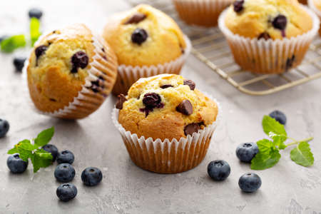 Chocolate chip and blueberry muffins freshly baked Standard-Bild