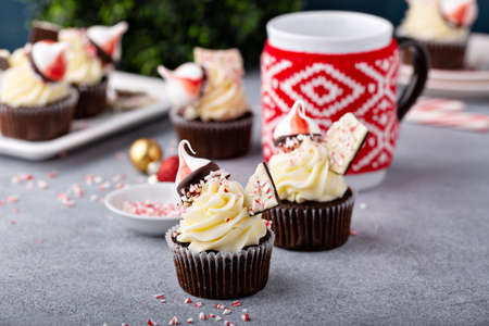 Peppermint bark and chocolate cupcakes for Christmas Фото со стока