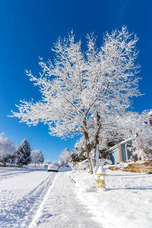 Residential neighborhood after the snowstorm in the clear weather. Aurora, Colorado