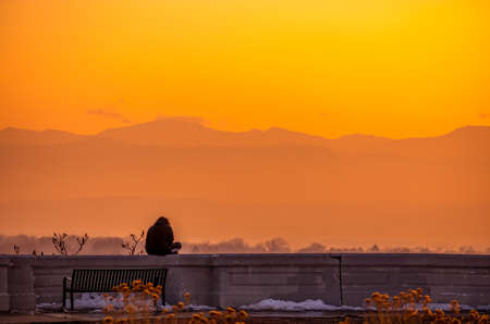 Back view of a person silhouette meditating at mountain sunset in the Inspiration Point park in Denver, Colorado 版權商用圖片