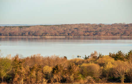 Landscape with bare trees near Newport, Rhode Island on an early spring morning