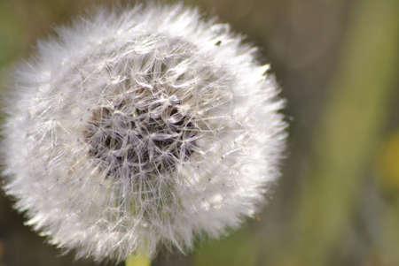 blown away: Blown away