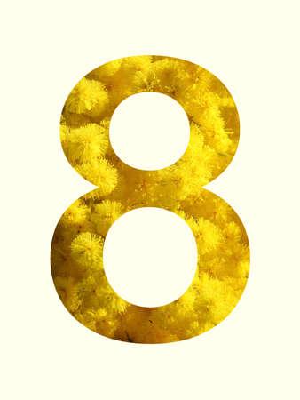 La forma di un otto con mimose all'interno.