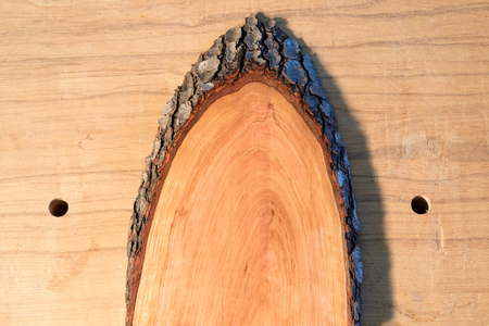 Cherry wood half oval with bark edge on workbench Stock Photo