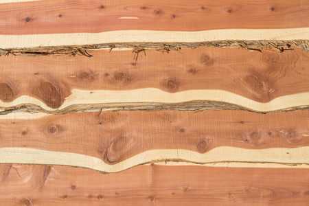 Eastern red cedar bark edge boards overlapping with knots
